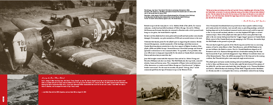 Hell Hawks book and history of the 365th fighter group